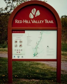 Hiking Trails Ontario, Waterfalls in Ontario, Ontario Waterfalls Albion Falls,