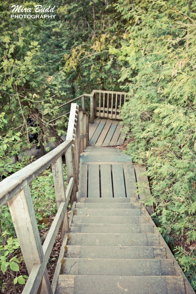 Hiking Trails in Ontario, Belfountain Conservation Area,