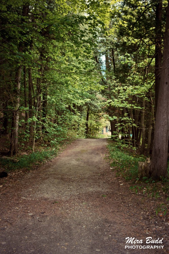 Hiking Trails in Ontario, Hiking Trails in Caledon,
