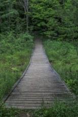 top hiking trail in ontario, Hiking Ontario, Caledon Hiking trails,