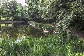 Glen Haffy Conservation Area