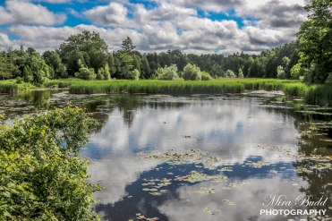 Beautiful Places in Ontario, Beautiful Towns in Ontario, Things to see in Ontario, Things to see in Caledon, Hiking Trails in Ontario, Top Hiking Trails in Ontario, Places to visit in Ontario,
