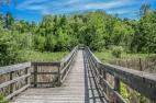 Hiking Trails in Ontario, Wetlands Ontario Marsh, Ontario Hiking,