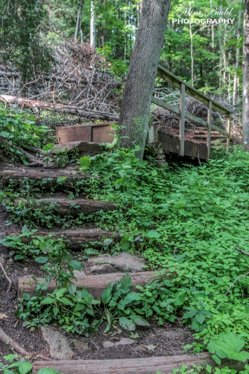 Top Hiking Trails in Ontario, Things to See in Ontario, Destinations Ontario,