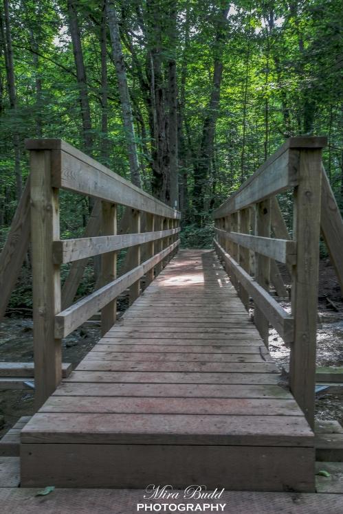 Ontario Hiking, Top Hiking Trails in Ontario, Best Hiking In Ontario,