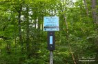 Hiking Trails in Ontario, Best Hiking in Ontario, things to see in Ontario, Hamilton Hiking Trail,