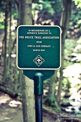The Bruce Trail Hiking, Hiking Ontario, Top Trails in Ontario, Waterfalls in Ontario, Sherman Falls Hamilton Ontario,