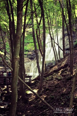 Waterfalls Along The Bruce Trail, Hiking Ontario, Beautiful Places in Ontario, Waterfalls in Ontario, Hamilton Waterfalls,