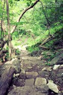 Day Trips Ontario, hiking in Ontario, Best Hiking Trails in Ontario, Waterfalls along the Bruce Trail,