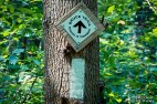 Hiking Trails in Hamilton Ontario, Best Hiking Trails in Ontario, Things to Visit in Ontario,