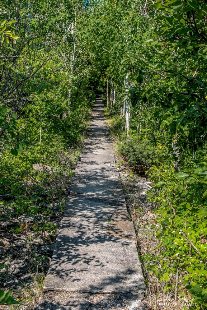 Hiking Trails Ontario, Lighthouses Ontario, Things to see in The Bruce Peninsula, Things to See in Ontario, Lighthouses Ontario, Wiarton Ontario,