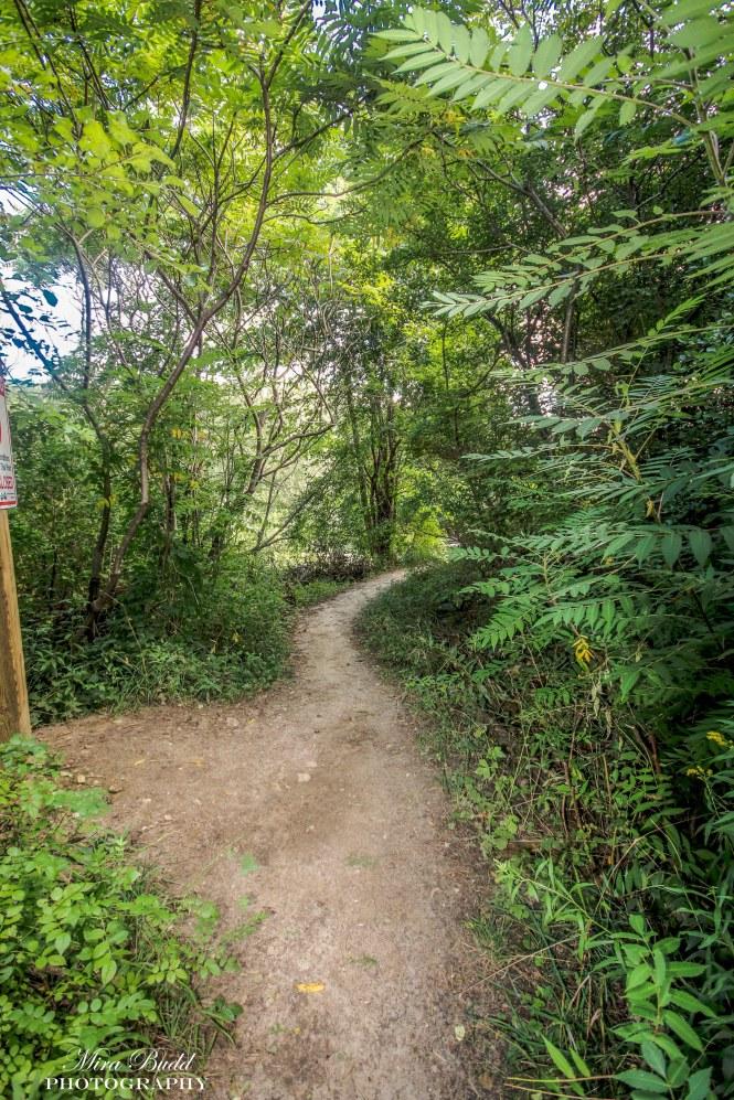 Hiking Trails in Ontario, Ontario Hiking ,