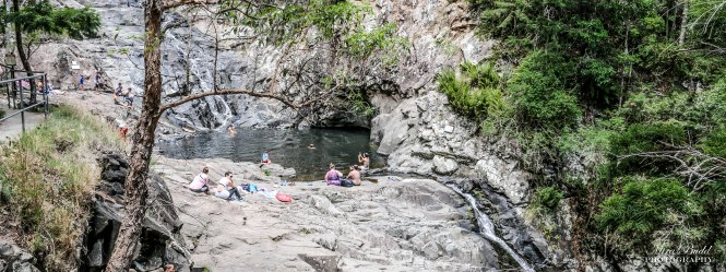Cedar Creek Falls, Swimming Hole, Mount Tamborine, Waterfalls in Queensland, Surfers Paradise Waterfalls, Beautiful Places in Surfers Paradise Places to Visit Surfers Paradise,