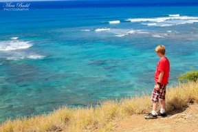 Things to See in Hawaii, Hawaii Waterfalls, Amazing Beaches in Hawaii, Beautiful Places in The world, Oahu Hawaii, Beach Hawaii,