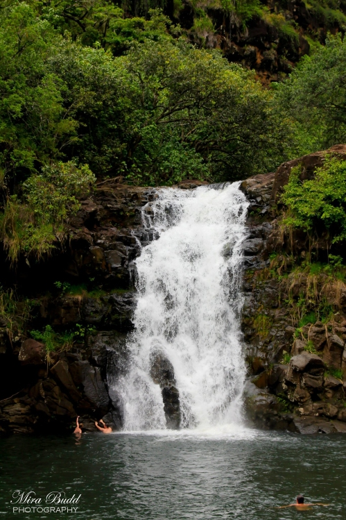 Waimea Valley, Waimea Falls, Things to See in Hawaii, Hawaii Waterfalls, Amazing Beaches in Hawaii, Beautiful Places in The world, Oahu Hawaii, Kailua Beach Hawaii,
