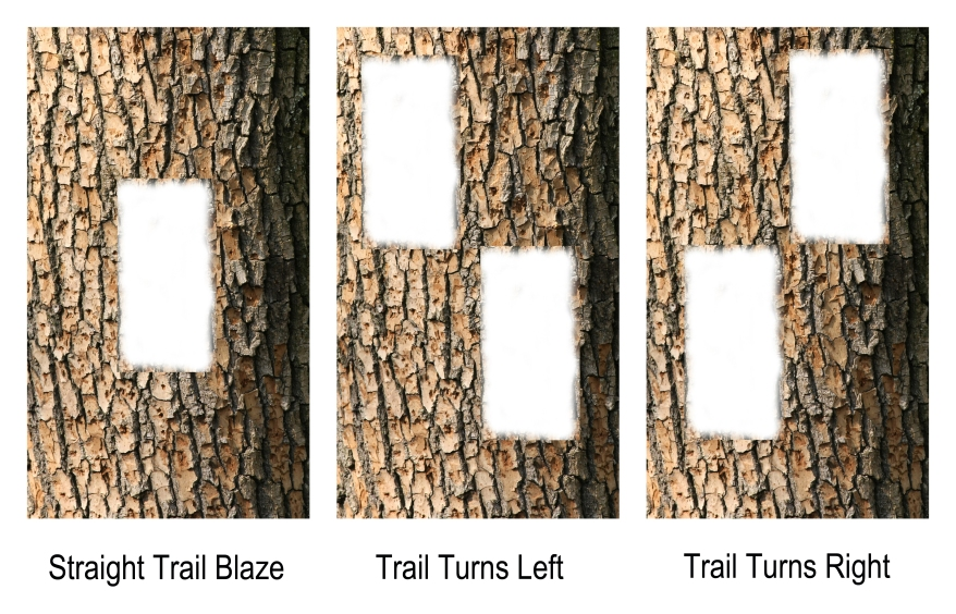 Trail Blazes, Trail Markings, Hiking Trail Blazes, Ontario Hiking Trails, Hiking Trail Markers, Bruce Trail, Hiking Ontario,