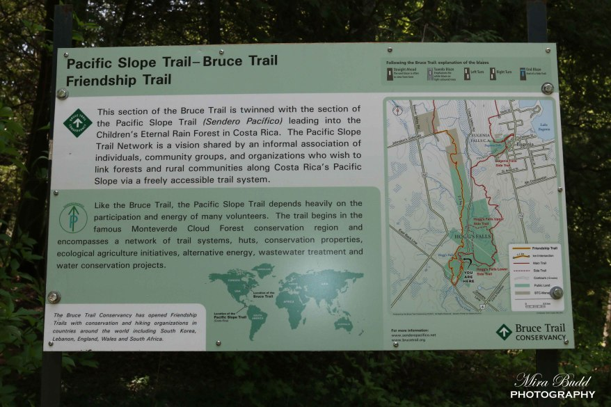 Hoggs Falls Trail Map, Hoggs Falls Bruce Trail, Hiking Trails Ontario, Beautiful Places in Ontario,