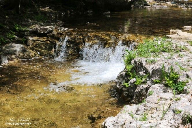 Eugenia Falls Conservation Area