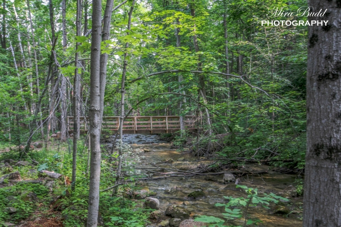 Silver Creek Conservation Area