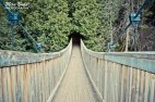 Hiking Trails in Ontario, Best Hiking Trails in Ontario, Things to See in Caledon, Belfountain Conservation Area,