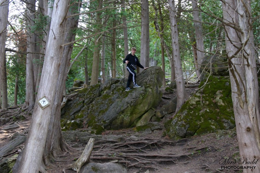 Limehouse Conservation Area, Conservation Areas Ontario, Hiking Trails Ontario, Best Part of the Bruce Trail, Hiking Trails in Halton Hills, Ruins in Ontario, Beautiful Places in Ontario, Ontario Hiking Trails, CVC Conservation Areas,