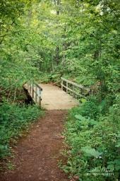 Wood Bridges Ontario, Ontario Hiking Trails, Beautiful Places in Ontario, Hiking Ontario,