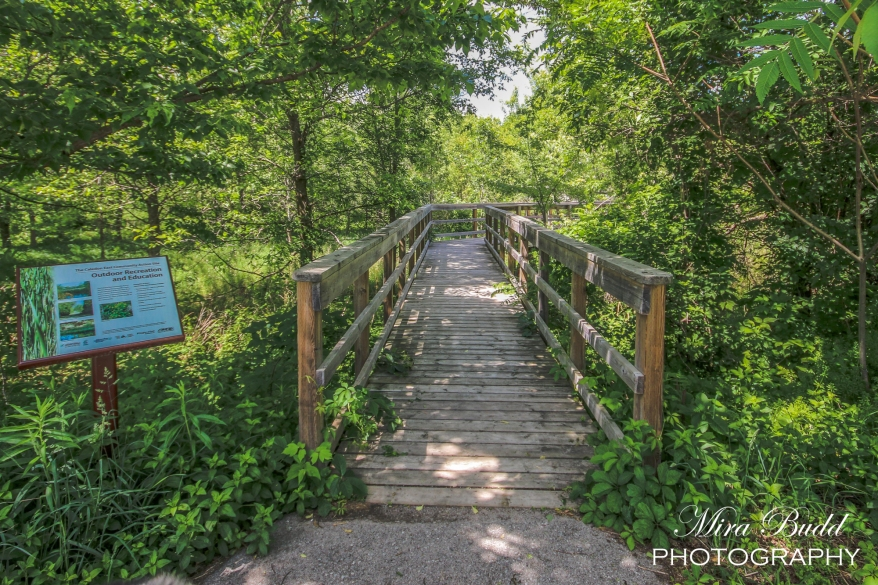Wood Bridges Ontario, Ontario Hiking Trails, Beautiful Places in Ontario, Hiking Ontario,
