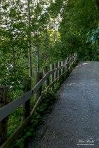 HVHT, Hiking Trails Bolton Ontario, Urban Hiking Trails, Things to do in Bolton Ontario, humber River, Ontario Small Towns, Day Trips Ontario,
