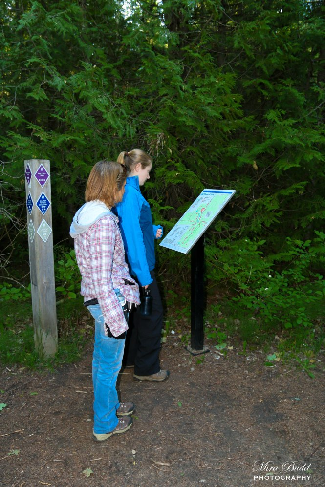 hiking Trails Ontario, Beautiful Places in Ontario, Ontario Hiking, Bruce trail hiking,