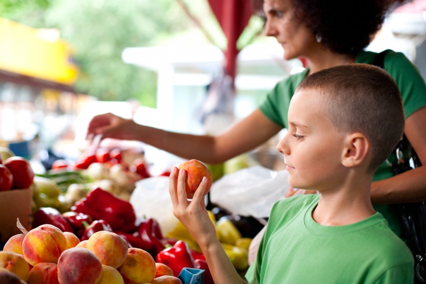 Inglewood Farmers Market, Things to do in Caledon, Places to See in Caledon, Caledon Events,