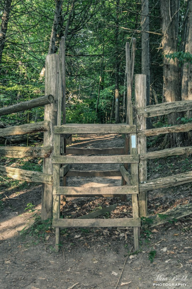 Hiking Trails Ontario, Bruce trail in Welcome to Hockley Valley Provincial Park, Beautiful Places in Ontario, Hiking Near Caledon, Hiking Trails, Ontario Hiking Trails,