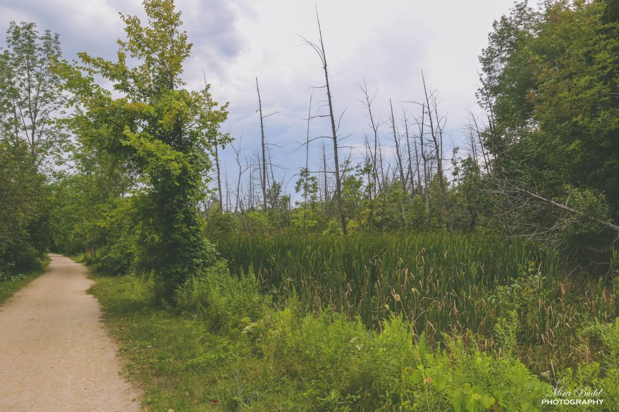 Caledon Trailway, Trans Canada Trail, Hiking Trails Ontario, Ontario Hiking Trails, The Great Trail, Caledon Hiking Trails,