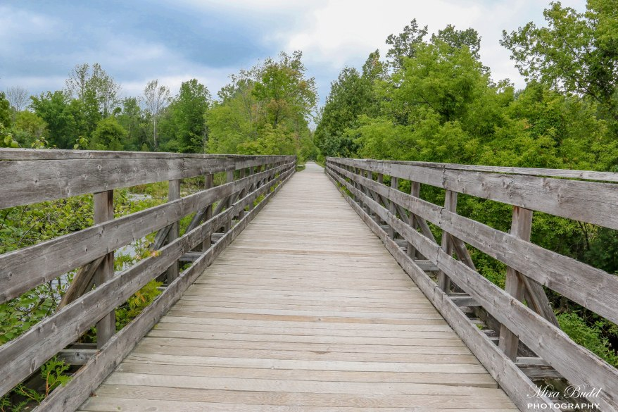 Trans Canada Trail Horizon, Hiking Trails Ontario, Cycling Trails Ontario, Hiking Trails Caledon, Beautiful trails in Ontario,