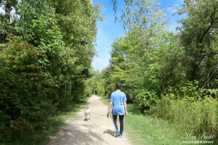 """5 Things you may not know about the Caledon part of the Trans Canada Trail """"The GreatTrail"""""""
