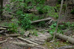 Humber Valley Heritage Trail, Caledon Hiking Trails, Hiking Trails in Bolton Ontario, Things to Do in Caledon, Things to Do in Bolton,