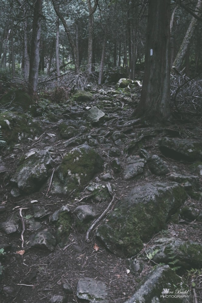 Bruce Trail Hiking, Devil's Pulpit Caledon, Hiking trails Caledon, Things To Do in Caledon, Beautiful Hiking Trails Ontario,