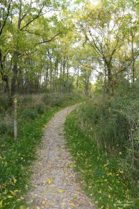 Trans Canada Trail, Hiking Trails Ontario, Niagara River, Beautiful Places in Ontario, Ontario Hiking Trails,