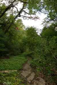 Trans Canada Trail, Bruce Trail, Hiking Trails Ontario, Niagara River, Beautiful Places in Ontario, Ontario Hiking Trails,