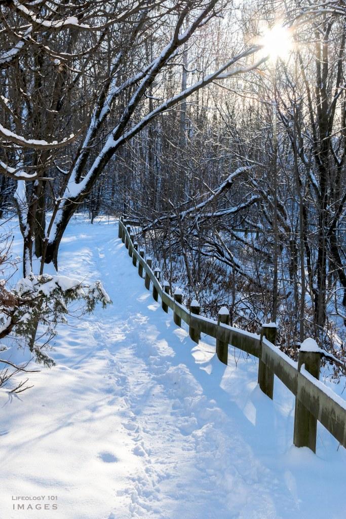 Hamilton Waterfalls, Beautiful Ontario Waterfalls, Ontario Hiking Trails, Bruce Trail, Smokey Hallow, Great Falls, Waterdown Ontario, Smokey Hallow,