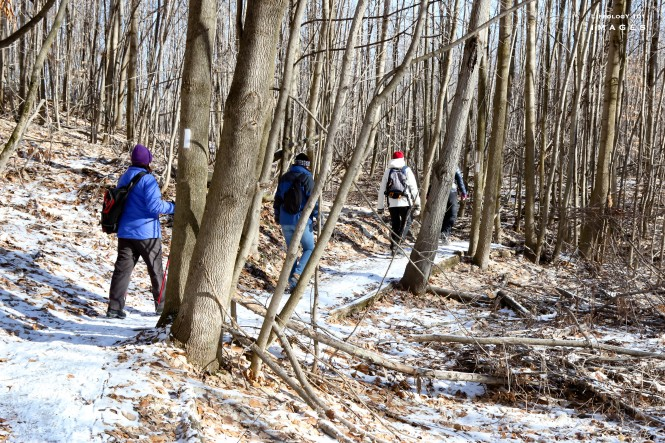 Hiking Trails in Ontario - Bruce Trail Hiking