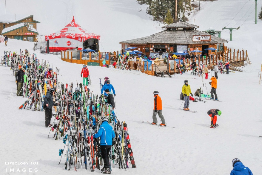 Ski Resorts Canada, Best Skiing in Canada Lake Louise Ski Resort,