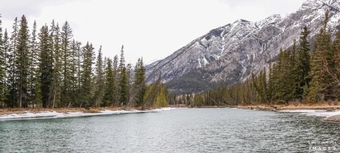 Banff Alberta, Bow Valley Parkway, Things to See in Alberta, Beautiful Places in Alberta, Places to visit in Banff, Hiking Trails Alberta,