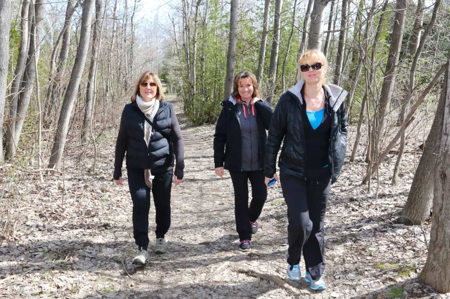 Hiking Trails Ontario, Caledon Hiking Trails, Best Hiking Trails in Ontario, Bruce Trail Hiking,