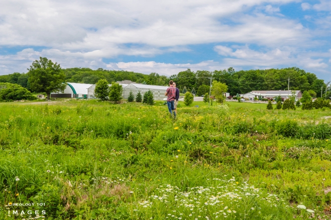 Things to do in Caledon, Strawberry Picking Caledon, Rock Garden Caledon, Places to visit in caledon, Family Things to do in Caledon,