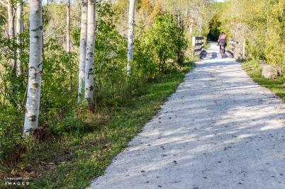 Caledon Biking, Biking Trails Ontario, Cycling trails Ontario, Best Biking trails in Ontario,