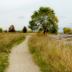 City Hiking, Places to Visit in Toronto, Things to See in Ontario, Hiking Trails Ontario, The Great Trail, Etobicoke Ontario Waterfront