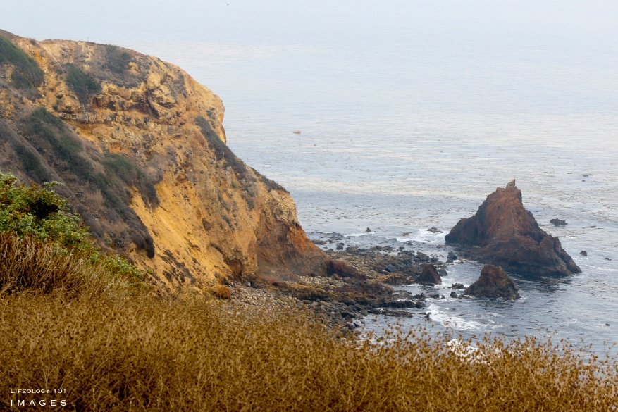 Palos Verdes Peninsula Hiking, Best Hiking Near Los Angeles, Places to Visit Near Los Angeles,