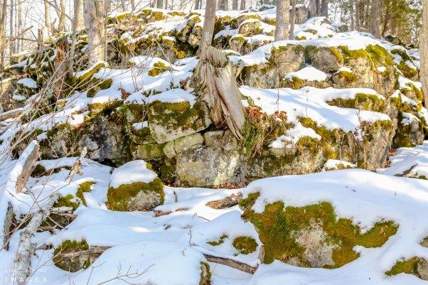 Hilton Falls Conservation Area Hike